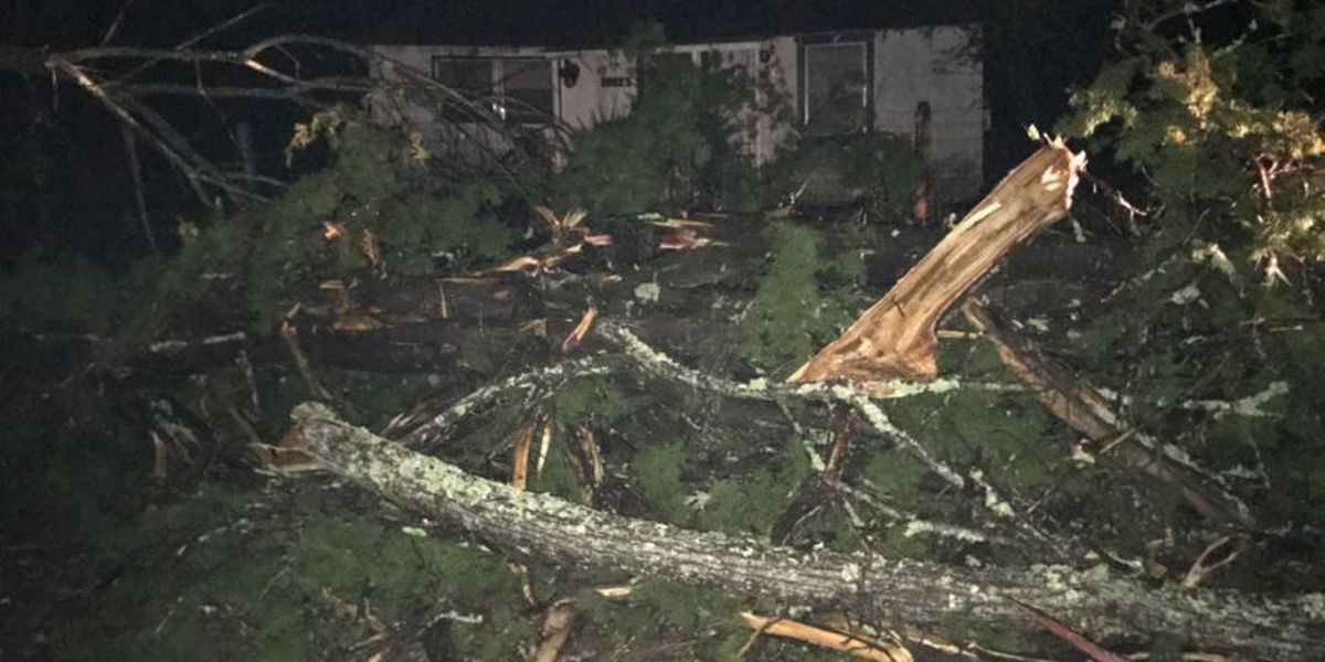 A 75-year-old took a bathtub ride to survival during ETX tornado