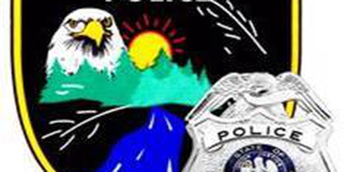 Shreveport police investigate burglary of police vehicle, gun stolen