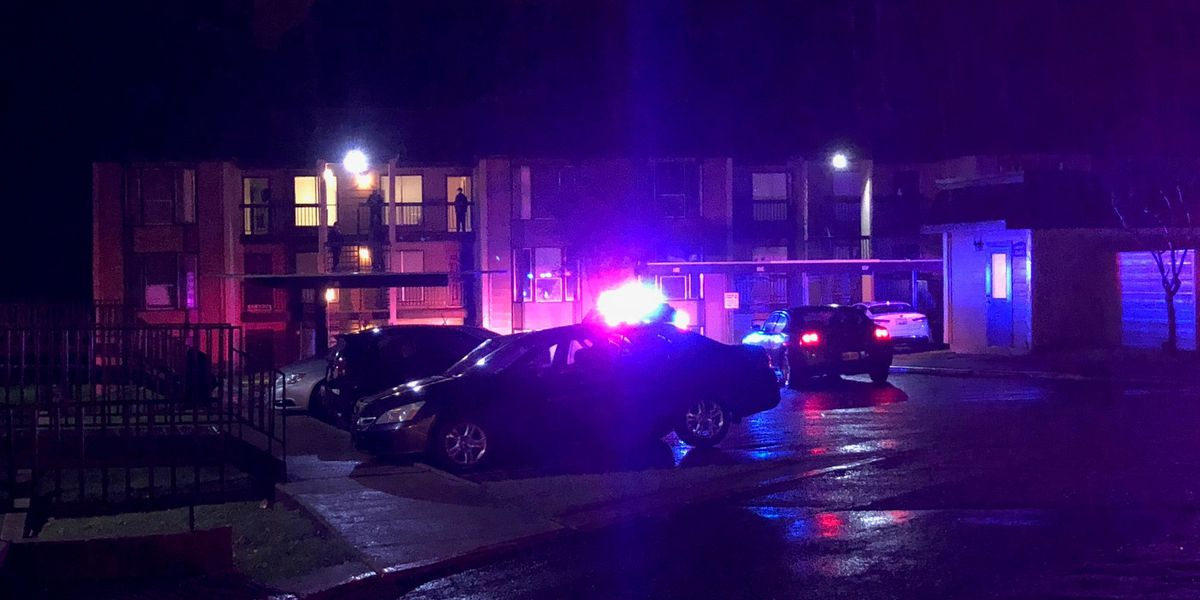 Woman shot after gunman fires into apartment