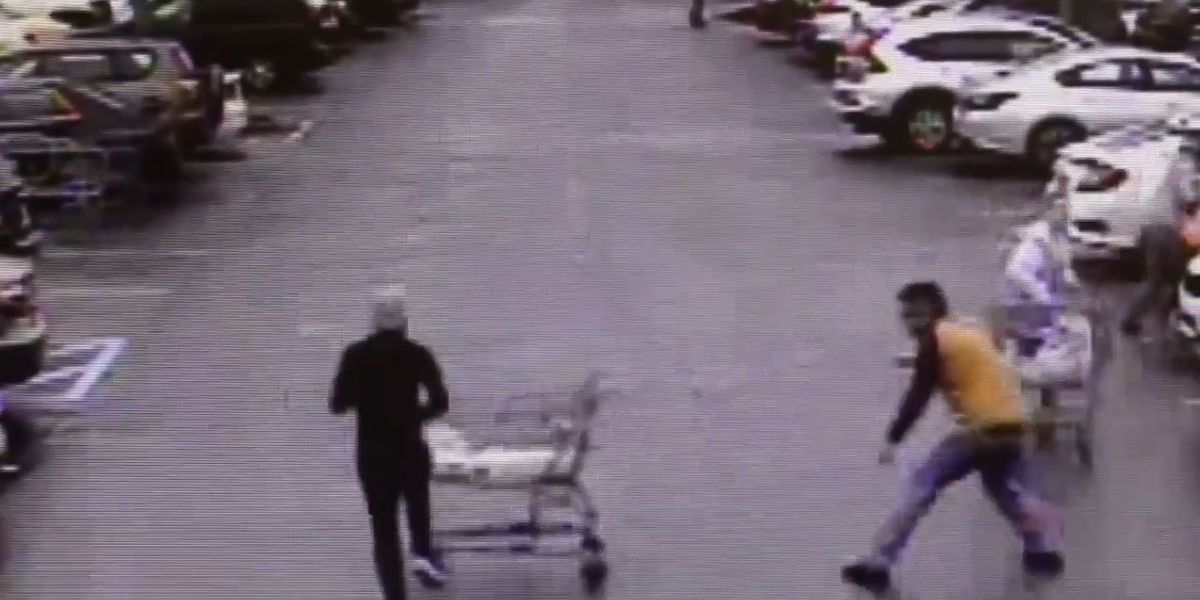 Georgia man caught on video stopping shoplifting suspect with shopping cart
