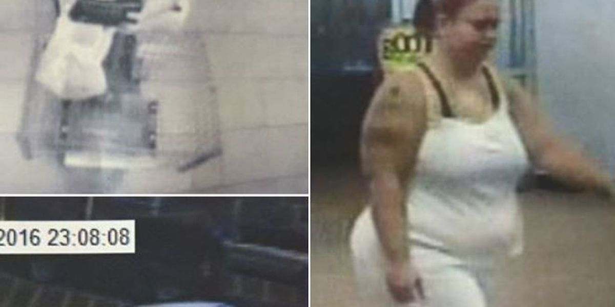 Surveillance images released of suspected purse thief