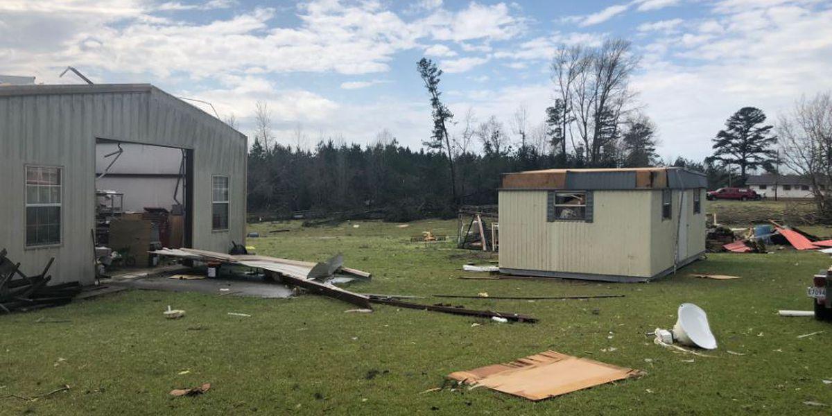 Trees down, buildings damaged in tornado-warned storms