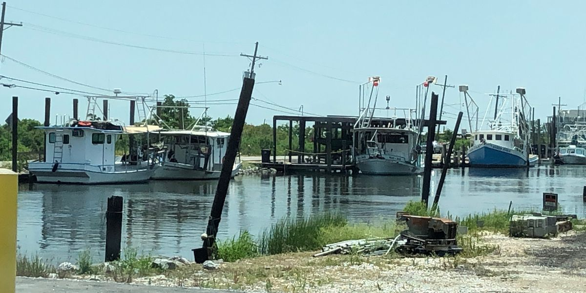 Oystermen say closures of prime harvest areas was inevitable