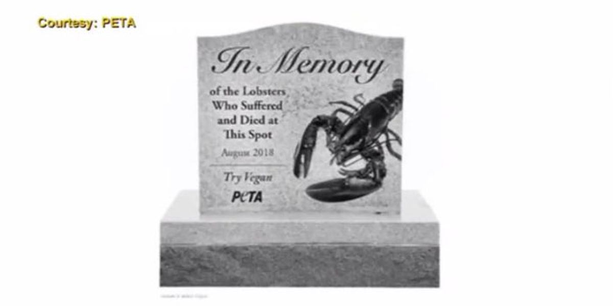 PETA calls for 5-foot memorial to lobsters that died in car accident