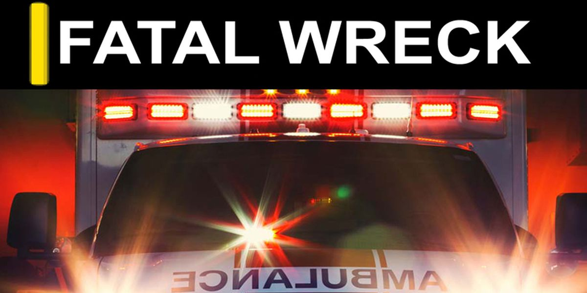 Fatal wreck leaves one man dead