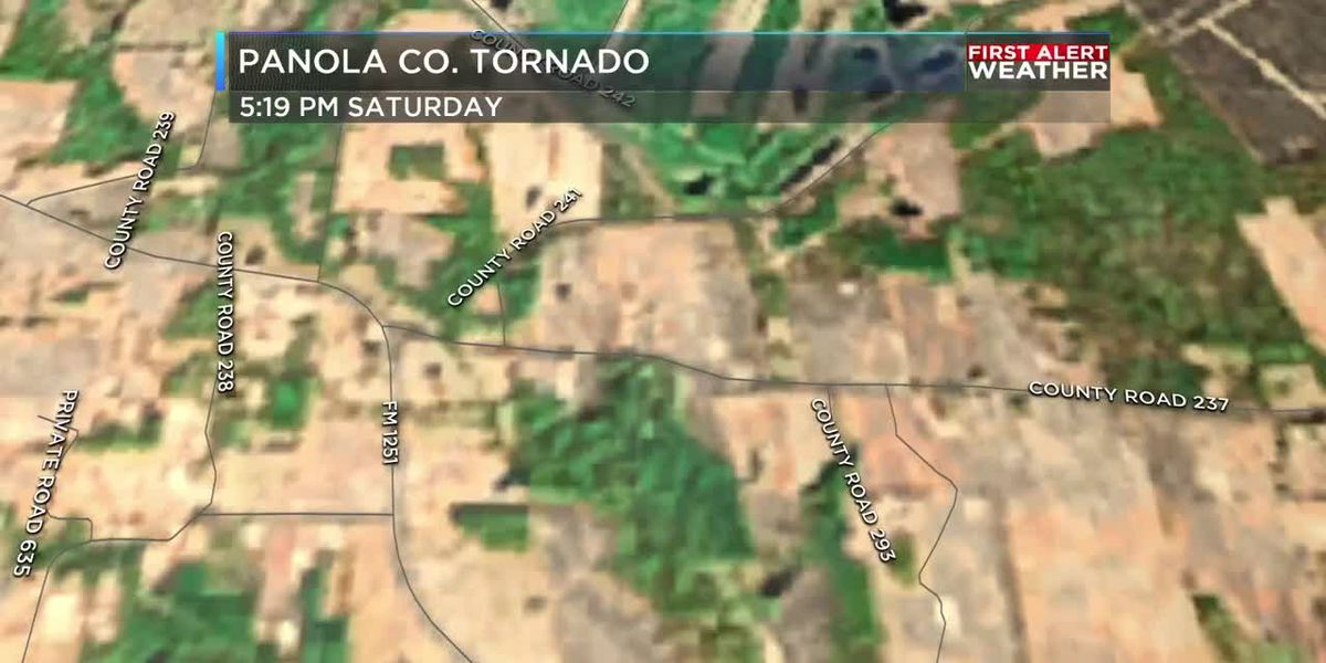 NWS team finds tornado damage in Panola County, TX