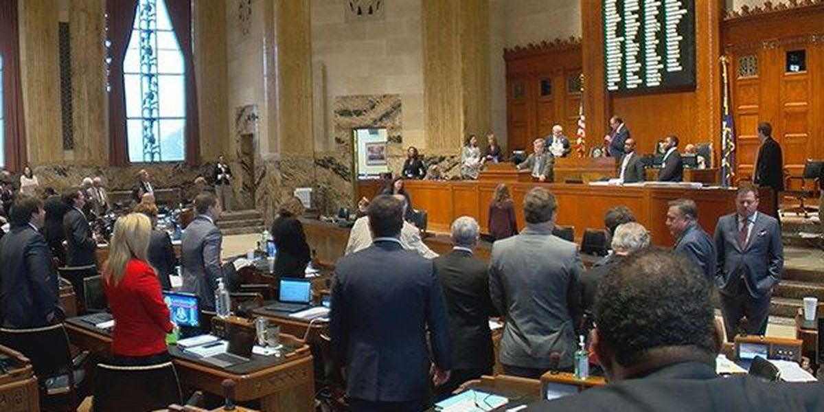 Why La. lawmakers will still get paid for time they were not at capitol during pandemic