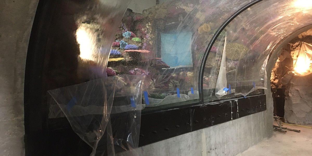 Shreveport Aquarium tanks filled with water