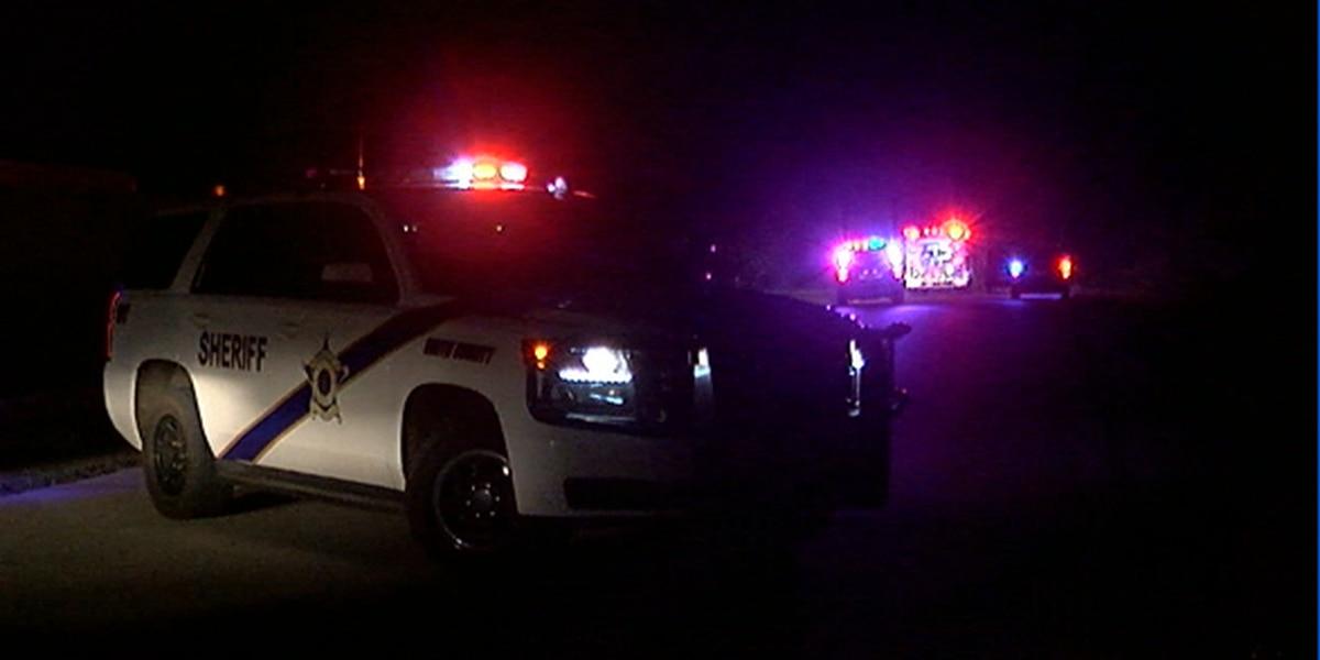ETX homeowner fires shots at alleged burglars, injuring one