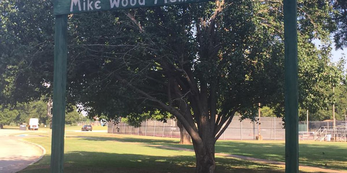 Wheels in motion for new lights, park signs in South Bossier City