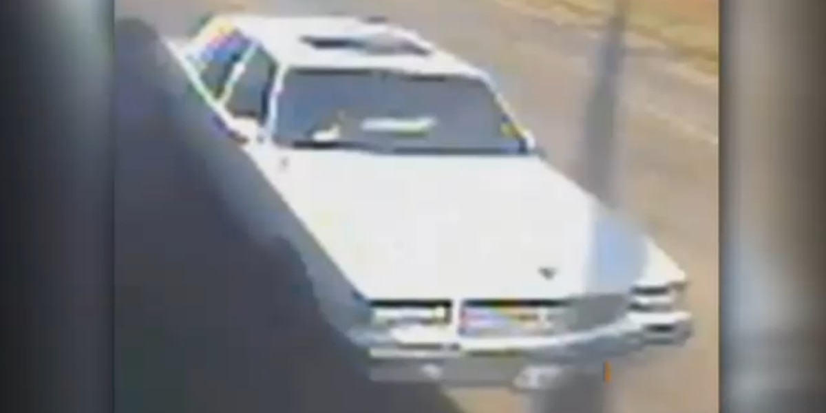 Police release surveillance image of car suspected in hit and run