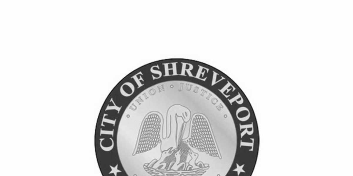 "UPDATED: Audit gives Shreveport ""D"", but not all bad"