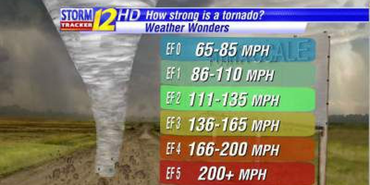 Weather Wonders: How strong is a tornado?