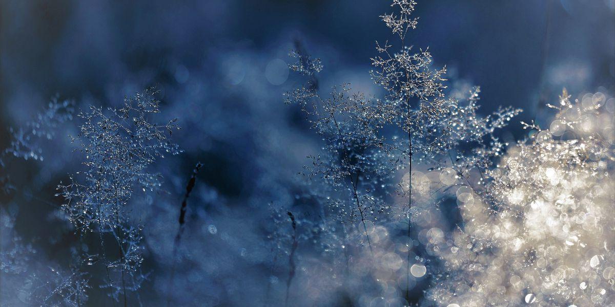 Parts of the ArkLaTex prepare for freeze, officials urge caution