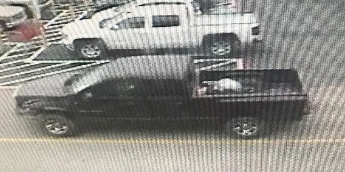 Police share images of truck used in equipment, tool theft
