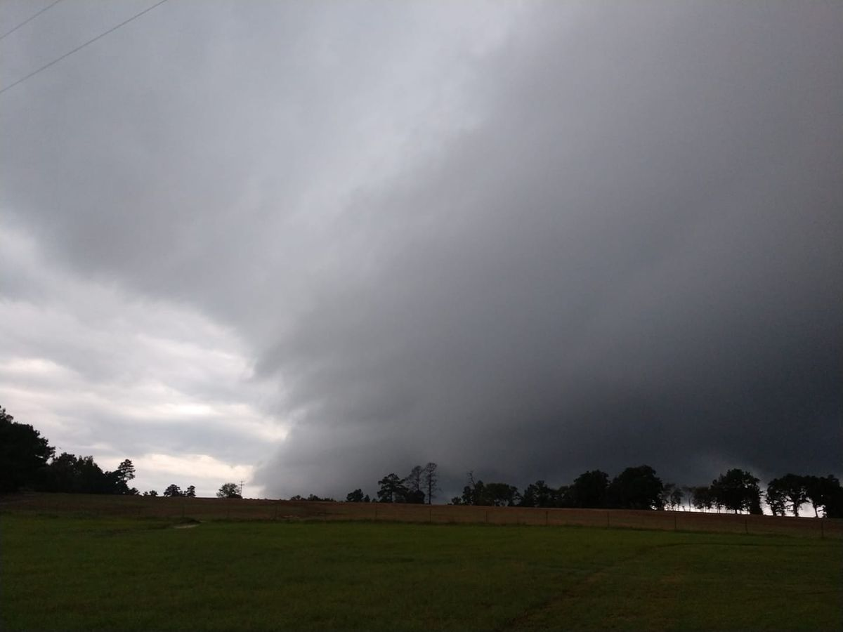 National Weather Service survey team finds tornado damage in East Texas