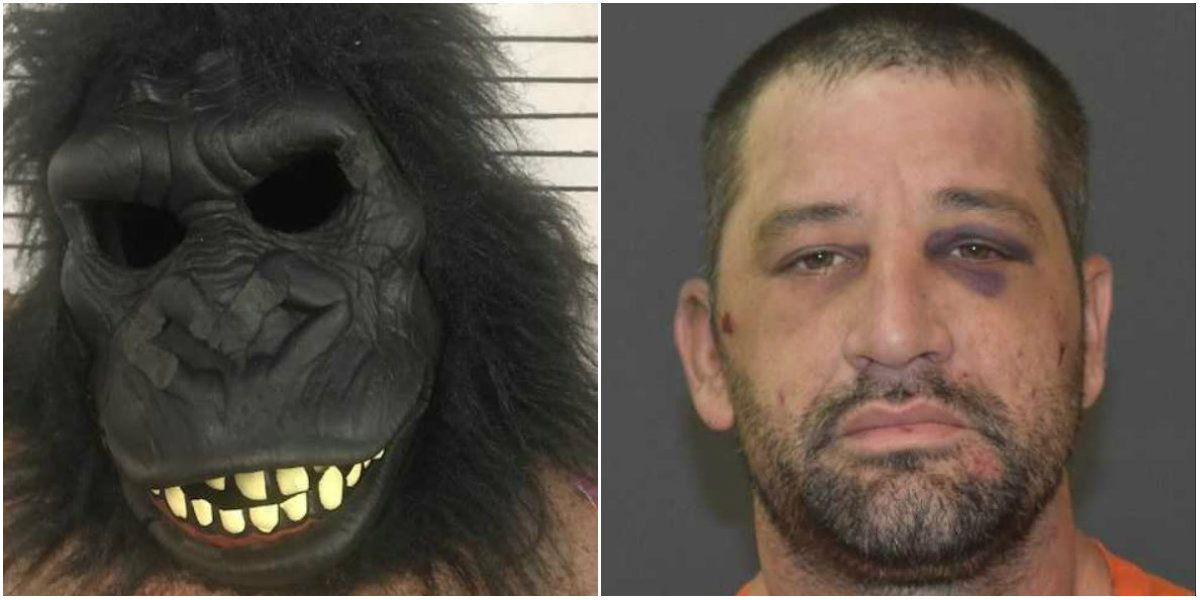 Louisiana man accused of breaking into home while wearing gorilla suit