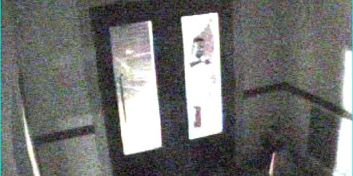 SWAR police seek ID of Hope City Hall vandal