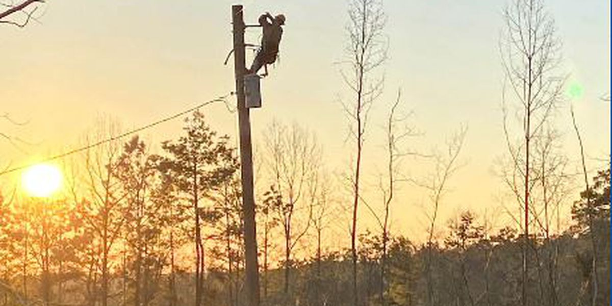 East Texas electric cooperatives helping each other restore power in service areas