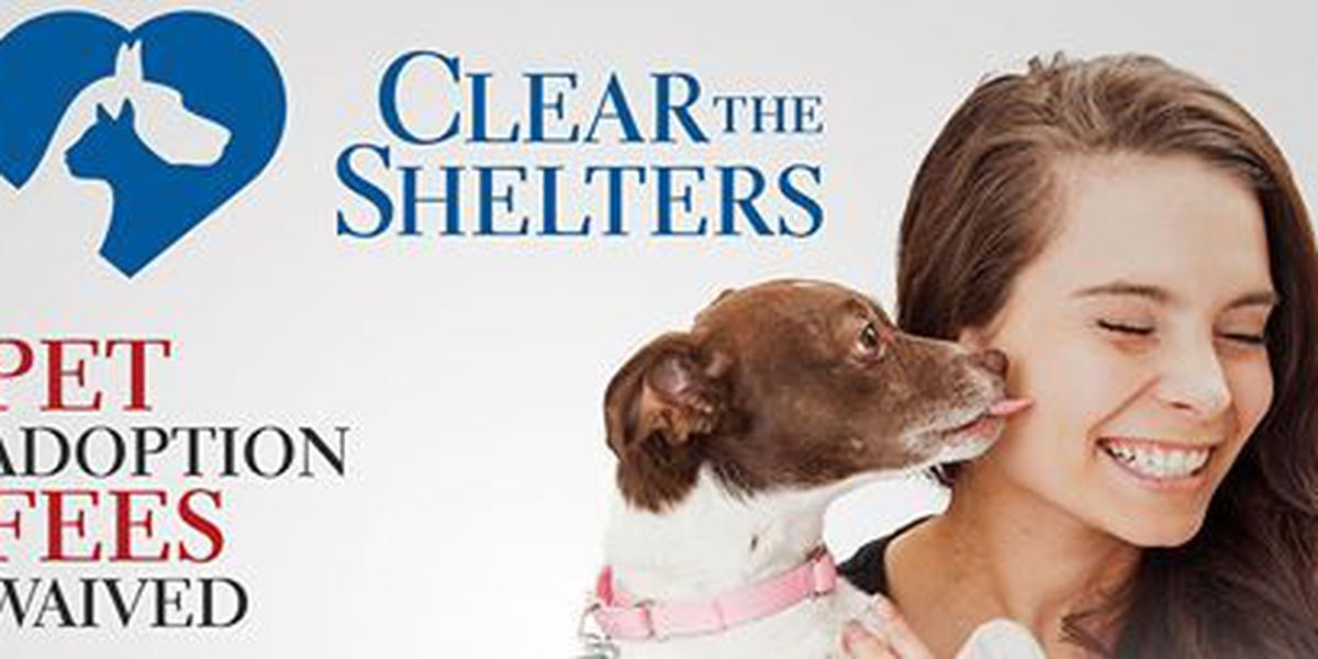 'Clear the Shelters' event held in Caddo Parish, Texarkana on Saturday