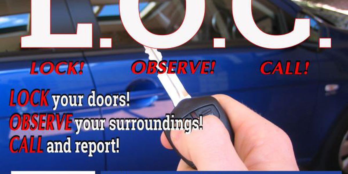 BPSO reports significant decrease in vehicle burglaries