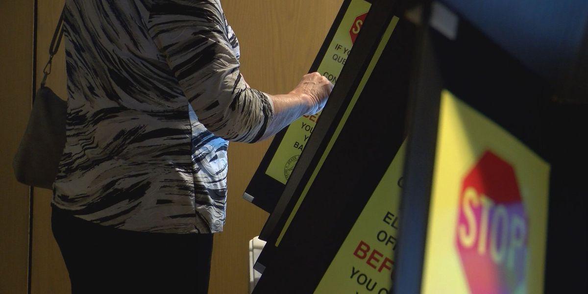 Deadline to register online to vote in La. presidential primary March 14