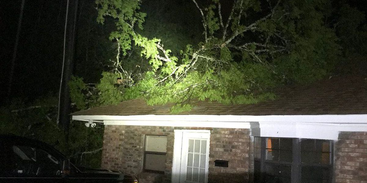 Thousands of homes and businesses without power in ArkLaTex
