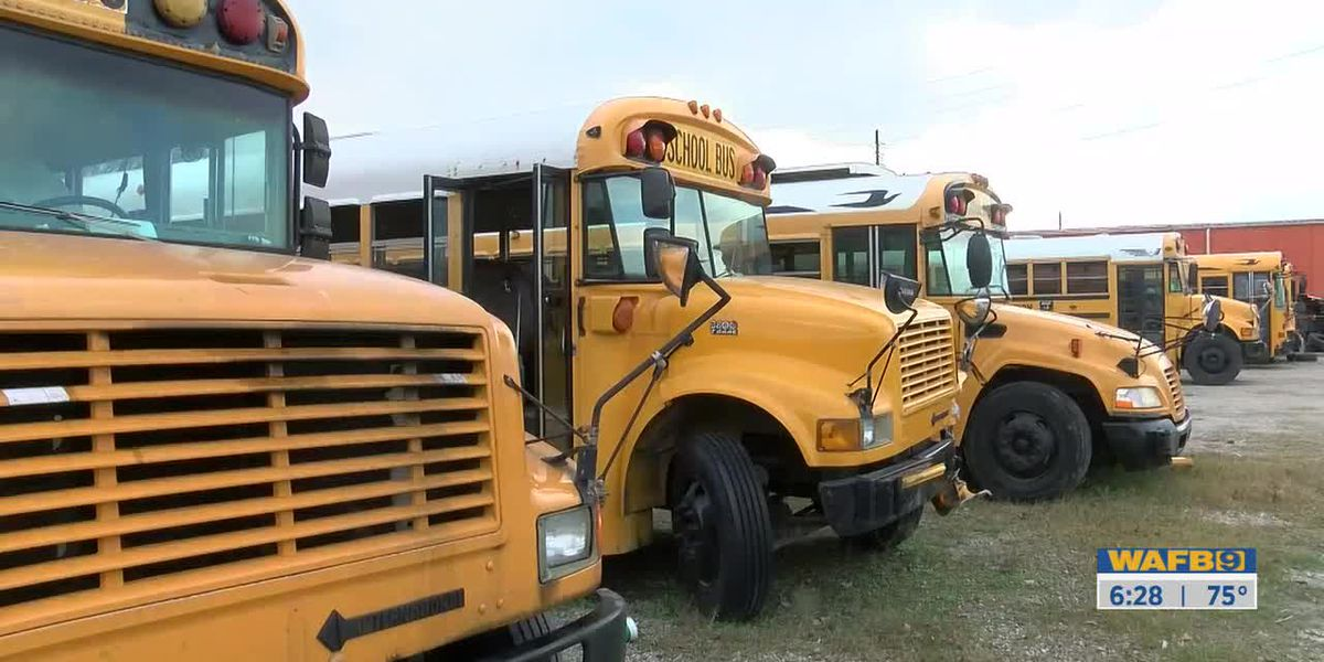 Louisiana lawmakers push for seat belts on school buses