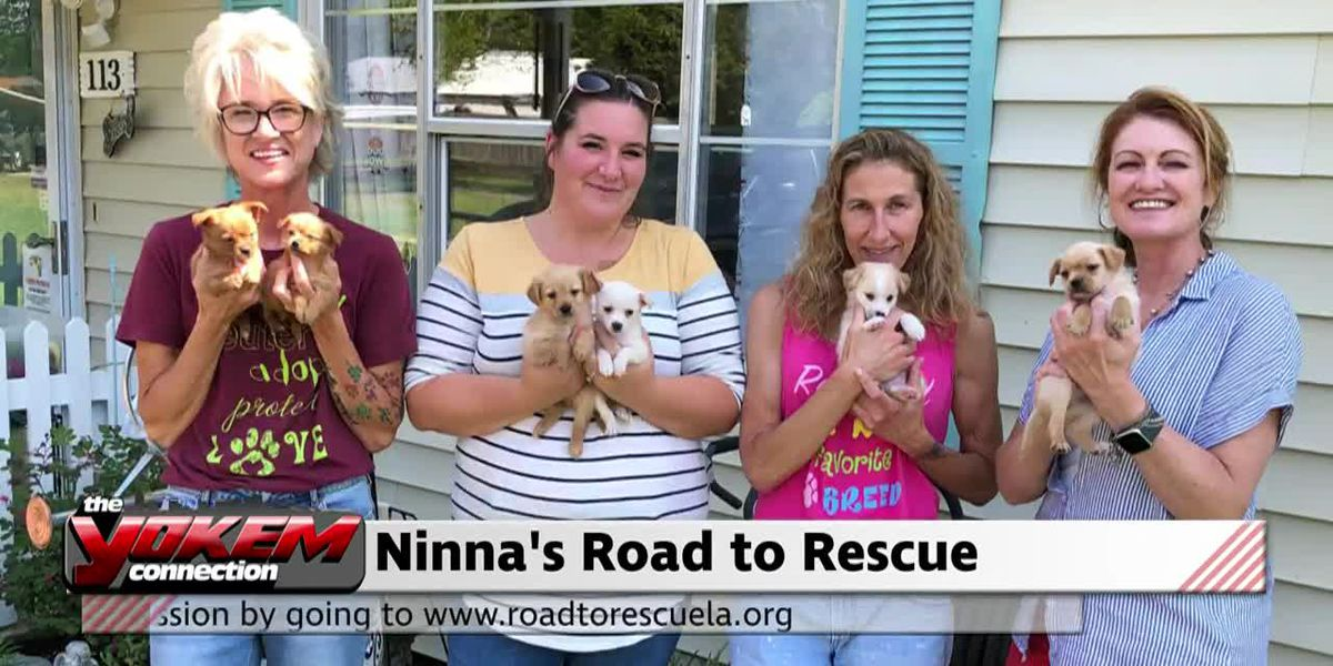 Yokem Connection - Ninna's Road to Rescue
