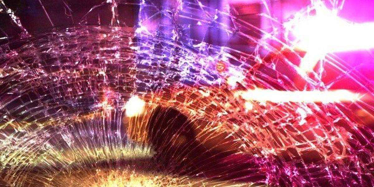 Longview Police: Pedestrian dies after being hit by vehicle