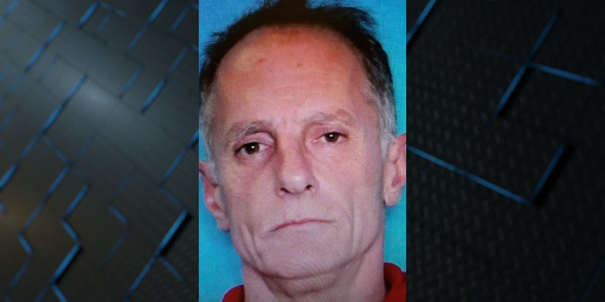 Man arrested for leaving dog in car while gambling, killing it