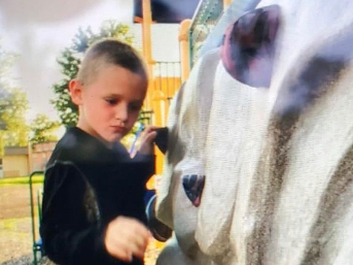 UPDATE: Missing 6-year-old found safe