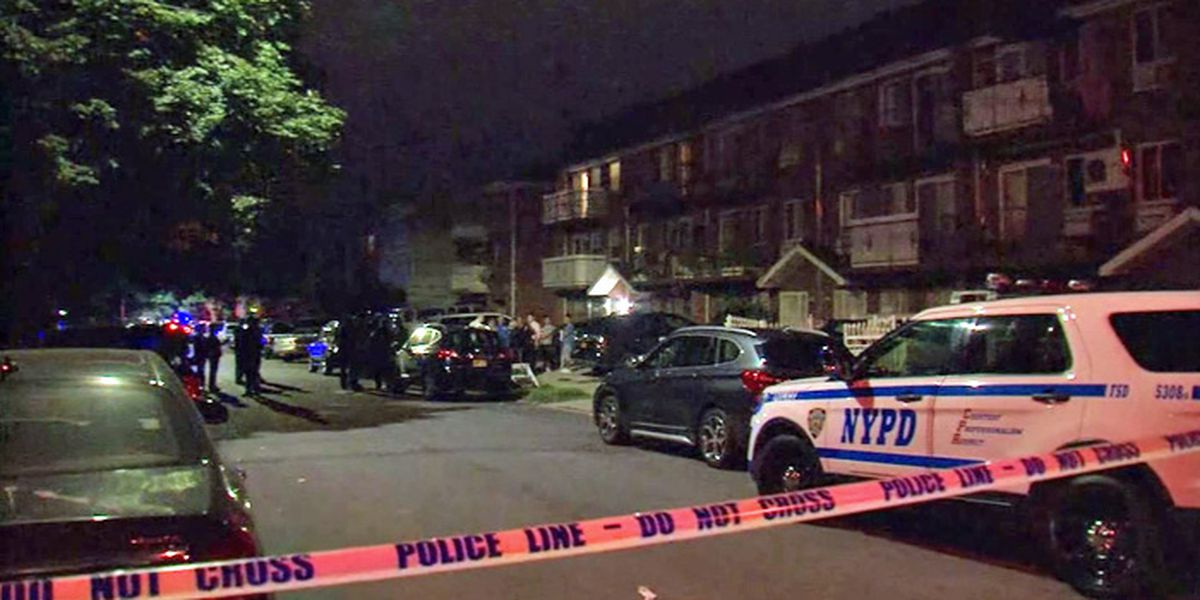Daycare worker stabs 3 infants, 2 adults in New York, police say