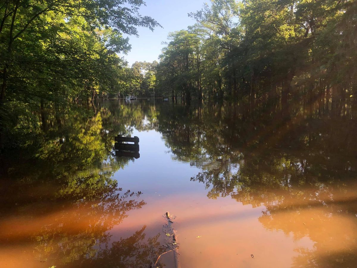 Parts of Caddo Lake State Park not expected to reopen ...