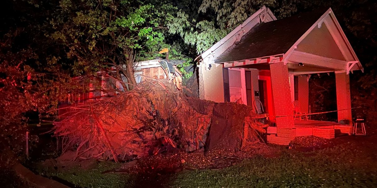 Texarkana, Ark., fire crews rescue 2 women, child from houses crushed by tree that fell during storms