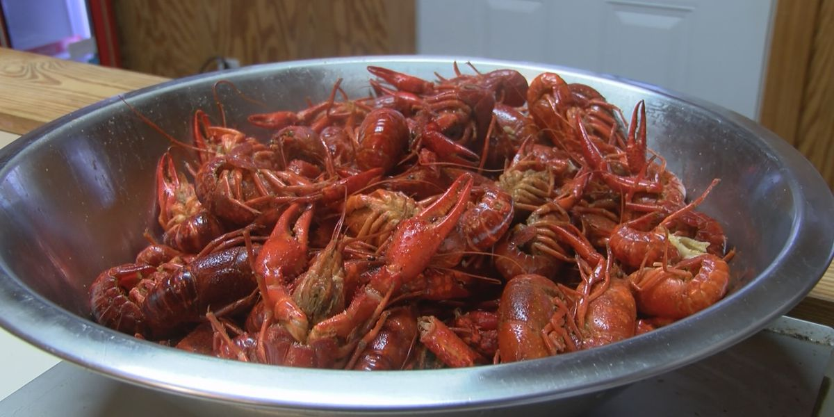 Severe storms affect crawfish haul ahead of Easter weekend
