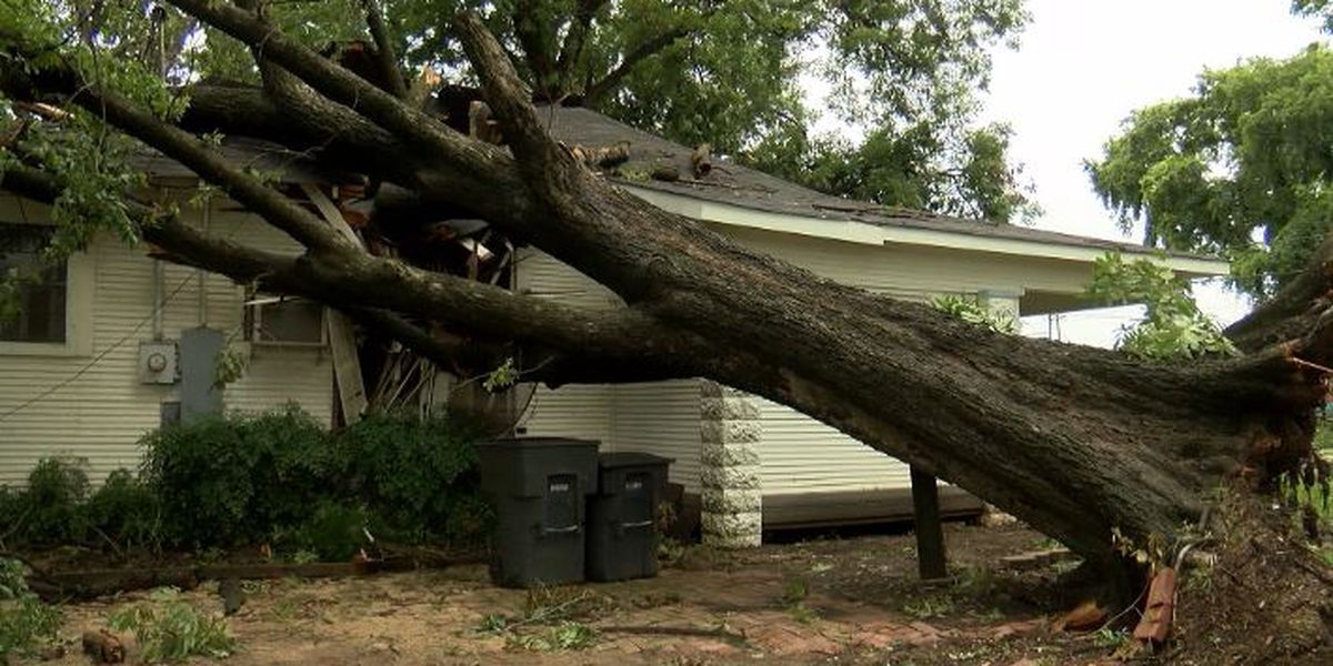 East Bank District hit heavy by Sunday night's storm