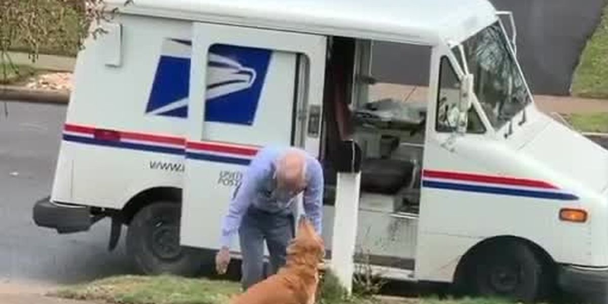 VIDEO: Dog loves her mailman, greets him every day