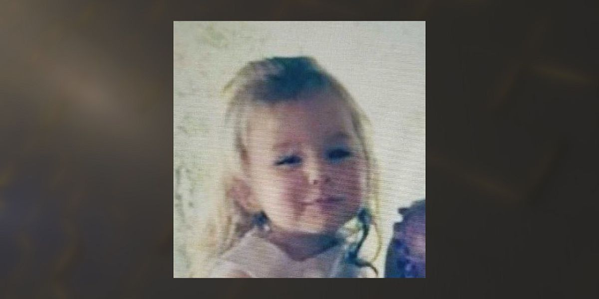 Idaho Amber Alert canceled; 4-year-old found safe