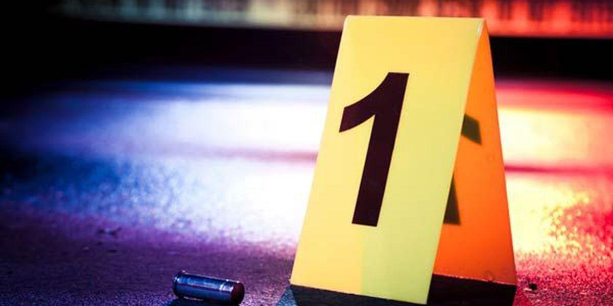 Person shot during carjacking, police searching for gunman