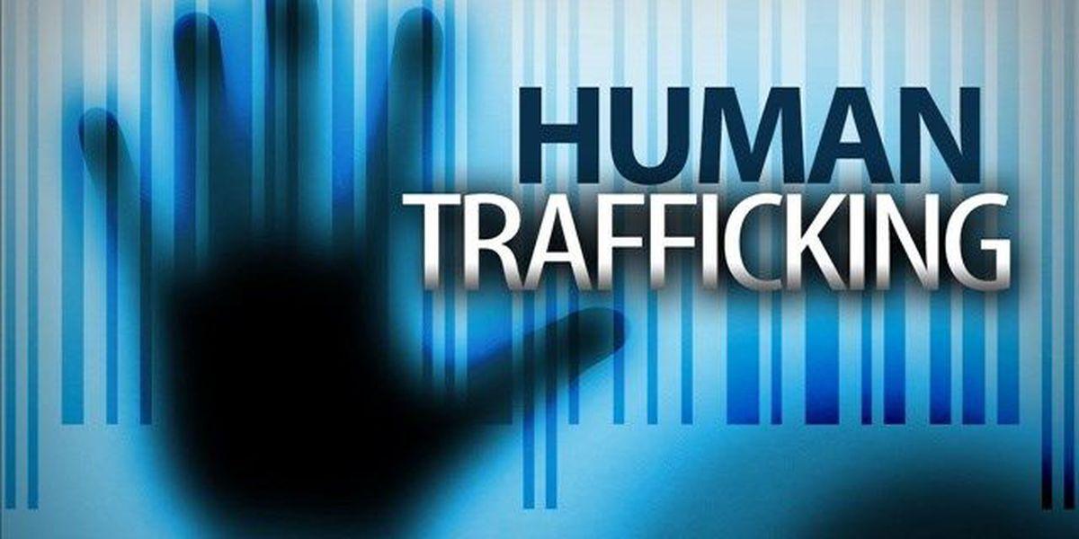 Northwest LA groups come together against human trafficking