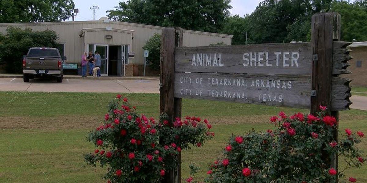Texarkana animal shelter raising fees for surrenders, reclaims