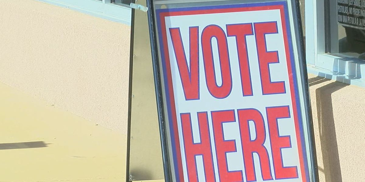 LOCAL ELECTION COVERAGE: Full results