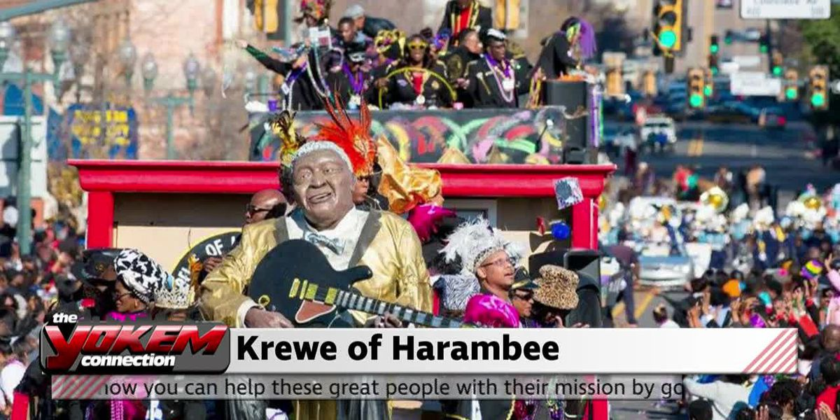 Yokem Connection - Krewe of Harambee