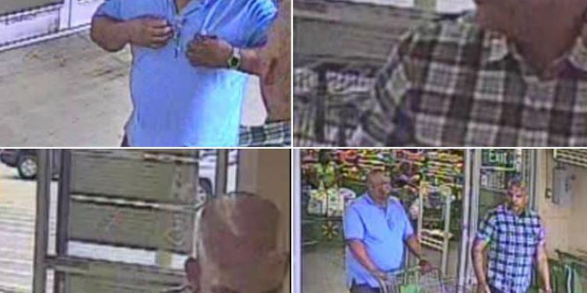 Bossier detectives seek pair of thieves